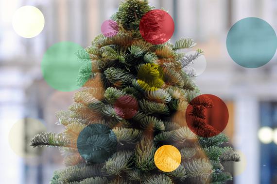 Vetrine d'autore: Rione Fontana veste il Natale!